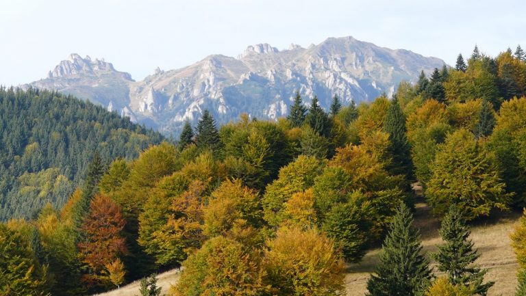 How biodiversity impacts the site suitability for Green care tourism in Romania?
